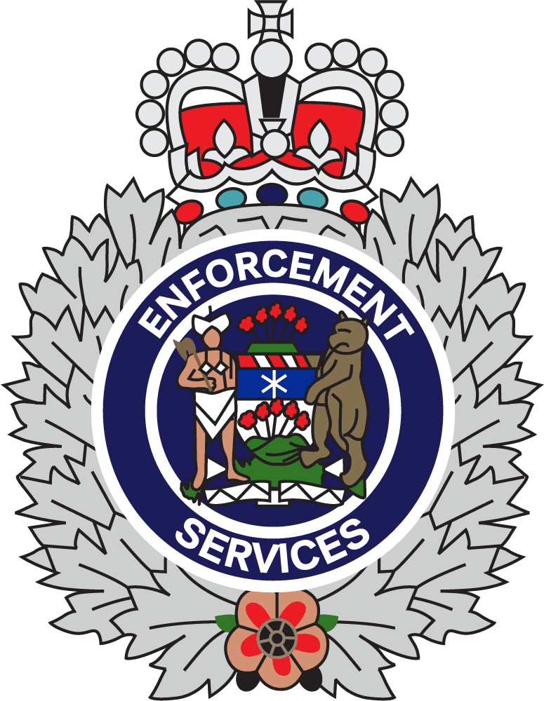 Enforcement Services Badge